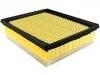 Air Filter:DS7Z-9601-A